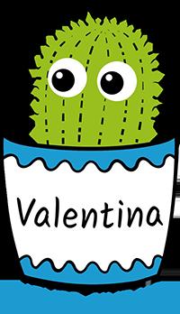 Logo Stiftung Valentina